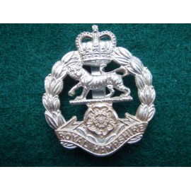 Royal Hampshire Regt Anodised Cap Badge