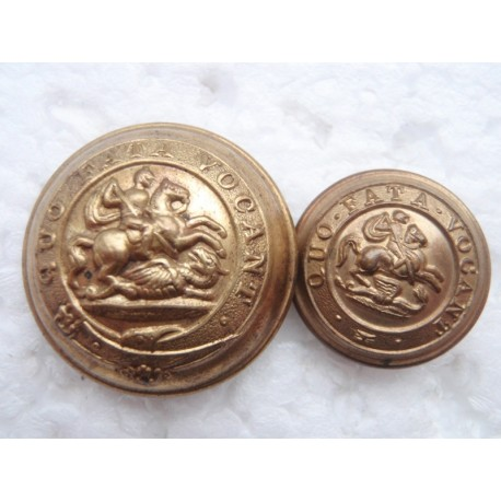 The Royal Northumberland Fusiliers Gilt Buttons