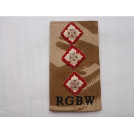 Captains Royal Gloucestershire, Berkshire & Wiltshire Regt