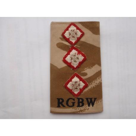 Captains Royal Gloucestershire, Berkshire & Wiltshire Regt