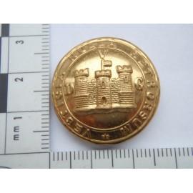 5th Royal Inniskilling Dragoon Guards Button