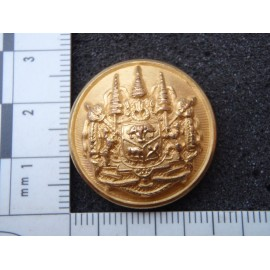 Burmese Military Forces Button
