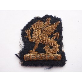 Officers Bullion Wessex Regt Beret Badge
