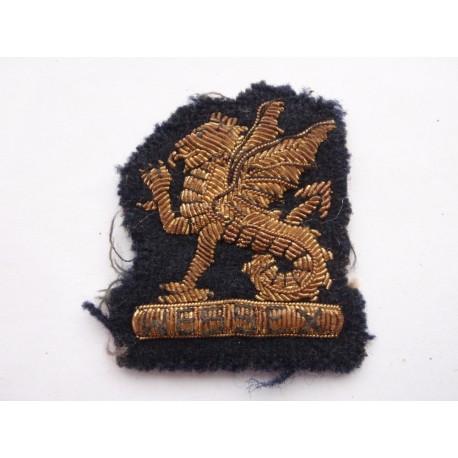 Officers Bullion Wessex Regt Beret Badge