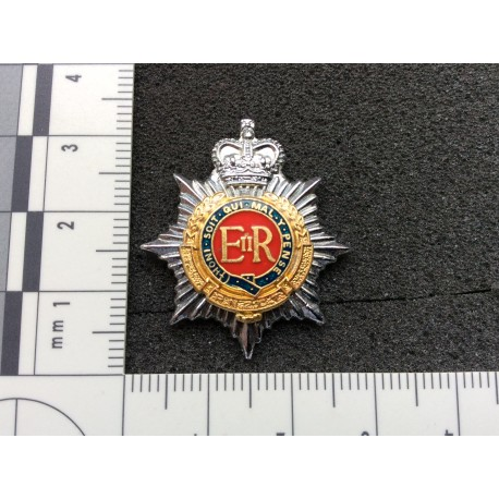 R.N.Z.C.T Officers Collar Badge
