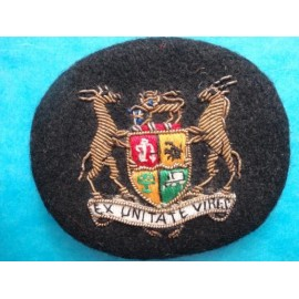 S.A Navy W.O Class Two Paddded Bullion Badge