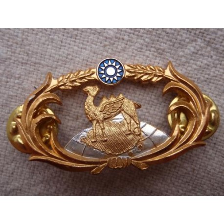 Taiwan Combined Operations Breast Badge