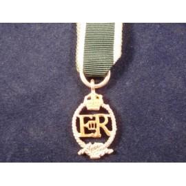 Royal Naval Reserve ER Issue Medal