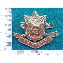 WW1 N.Z 6th (HAURAKI) Regiment Hat Badge